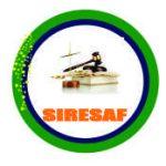 logo-siresaf2020