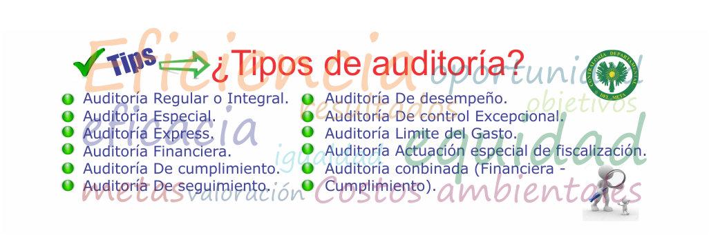 plantillas-de-web-tipos-de-auditorias-iten-original