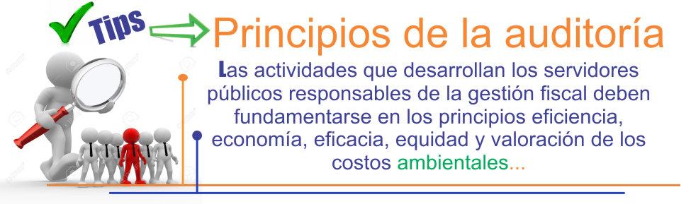 plantillas-pagina-web-tips-principios-d-ela-auditoria