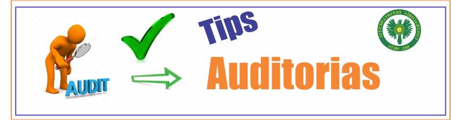 plantillas-pagina-web-tips-tips-de-auditorias